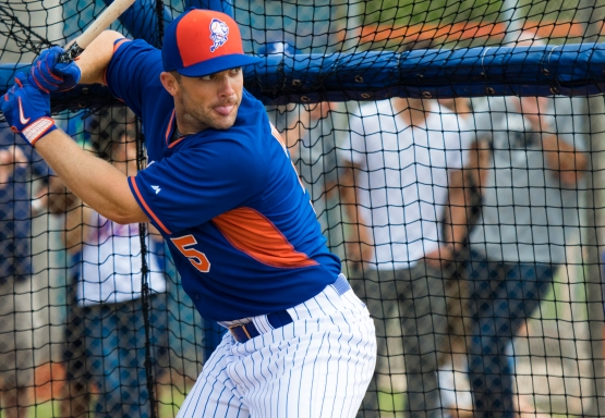 David Wright in the cage 1